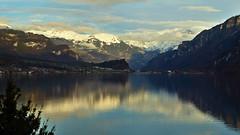 Brienzersee - Bern - Schweiz (Felina Photography - www.mountainphotography.eu) Tags: brienz brienzersee lakebrienz lago lac see meer lake water acqua bern schweiz switzerland svizzera suisse svizra zwitserland
