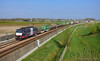 TXL 189 997 met containers te betuweroute Opheusden (Nick van Dijk trainphotography) Tags: bestickerd paarden wir bringen die kracht von 8500 pferden auf schiene betuweroute opheusden txl 189 997 containers guterzug zug goederen goederentrein trein mrce