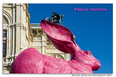 Osterhase_MSC4525 (! . Michael Schultes . !) Tags: hase rabbit pink ostern easter reiter ohr ear