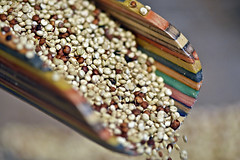 Sprouted Quinoa-HMM! (✪☺✿One Week Left!✿☺✪) Tags: macromondays seeds quinoa sprouted colourful scoop wooden