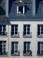 Paris (julien `) Tags: france olympus stylusone paris reading femme stylus1 fenetre bronzage windows europe spying bronzer