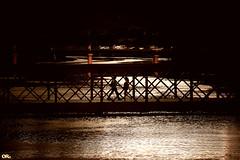 River of gold (Otacílio Rodrigues) Tags: rio river pontes bridges água water pôrdosol sunset reflexos reflections pessoas people urban travessia crossing caminhando walking silhuetas silhouettes resende brasil oro
