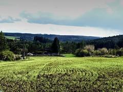 landscape_svatoslav (ladic_1) Tags: czech svatoslav panasonic dmc fz50 landscape color hdr