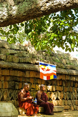 It's a long way to enlightment (MissKathySunshine) Tags: monk monks meditation meditating temple buddhism orange tree silence peace clarity om