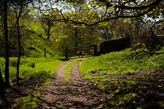 1920p 72dpi-7163 (reach.richardgibbens) Tags: bowland lancashire england uk littledale fell moorland moor valley dale