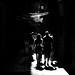 shadows / ombres