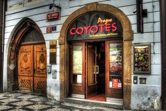 Coyote Ugly (dhmann photography) Tags: prague coyote ugly coyotes bar hdr canon 7d