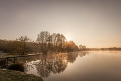 Bourgogne Matinale (Alexis Cayot) Tags: sunshine cayot landscape eau 35 water alexis l etang 5d lac eos paysage brume 16 fog lake ef markii 28