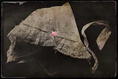 Possess(ed)-9899 (Poetic Medium) Tags: kitcamghostbird possession christening fabric child clothes vintagescene stilllife fashion blender female picsart ipod