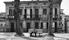 Lanciano - Aprile 2017 (Maurizio Tattoni....) Tags: lanciano italy abruzzo piazza panchina persona alberi architettura bn bw blackandwhite biancoenero leica monocrome mauriziotattoni