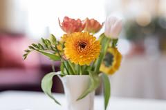 Tischblume (www.arternative-design.com) Tags: familienfeier feier geburtstag flowers flower blumen bokeh sigmaart sigma art 85 mm sigmaart85mm sigmaart85
