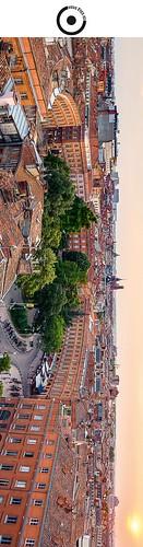 19x5cm // Réf : 12040726 // Toulouse