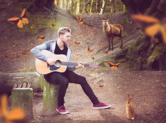 A Little Place for us to Hide (GideonAJWay) Tags: red nature composite deer rabbit birds butterflies idea conceptual pose guitar woods forest fantasy vibrant story color music