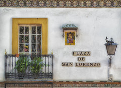 Paloma en San Lorenzo. (Capuchinox) Tags: plaza square sevilla seville paloma bird ventana window balcon olympus azulejo andalucia nik dodgeburn edifico building arquitectura arquitecture spain españa