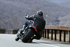 Harley-Davidson V-Rod 1704027476w (gparet) Tags: bearmountain bridge road scenic overlook outdoor outdoors motorcycle motorcycles motorcyclist goattrail goatpath windingroad curves twisties