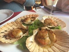 Scallops for lunch (corsi photo) Tags: vikingstar europe vacation cruise veniceitaly venezia scallops seafood shell