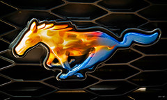 ride a painted horse... (Stu Bo) Tags: greatpaint grill horse musclecar mustang mustangsunlimited fordpower gallop ride rebel canon certifiedcarcrazy coolcar canonwarrior car sbimageworks showcar cool colors custom vivid icon idreamofcarsmotorsandhorsepower sexonwheels dreamcar youjustdontseethiseveryday flames
