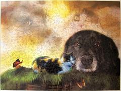 Cali and Pepper (Carol Cavalaris) (Leonisha) Tags: puzzle jigsawpuzzle cat chat katze dog hund