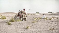 Roadside rest stop (In Explore 4.10.17) (Jodi Newell) Tags: camels canon desert dubai dunes jodinewell jodisjourneysphotosgmailcom men sunsetsafari turban
