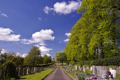 Memory lane (Sundornvic) Tags: path road trees green blue sun shine shrewsburycemetery longden coleham sky clouds grass graves burial