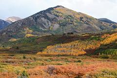 La Sal Loop, Moab (roberteberlein) Tags: herbstfärbung landschaft autumncolours