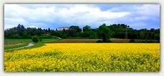 ARCANO SUPERIORE © (sigma18 (Mauro)) Tags: arcano udine friuli italia primavera colza castello spring castle yellow italy
