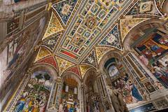 The breathtaking Piccolomini Library (Susanna Siu) Tags: travel traveleurope travelitaly siena duomodisantamariaassunta piccolinilibrary canon5dmarkll canonef1635mmf28liiusm canon