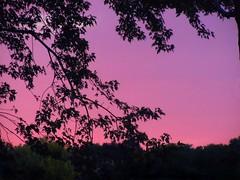 Atardecer (Ƹ̴Ӂ̴Ʒ Liz Ƹ̴Ӂ̴Ʒ) Tags: atardecer puesta de sol