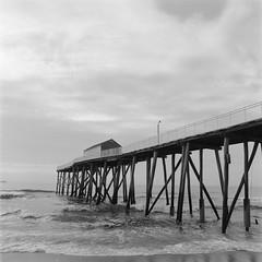 Belmar Pier (film) (Dalliance with Light (Andy Farmer)) Tags: ilfordfp4 ocean hasselbladzeiss50mmcf pier belmar ddxdeveloper14 nj hasselblad500cm bw water film shore newjersey unitedstates us