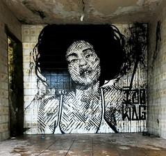 www.izolagarmeidah.com (izolag) Tags: saopaulo graffiti grafite grafitesp graffitisp arteurbana arte art urbanart stencil estencil gravura streetart street izolag armeidah bw brazilianart brasil brazil