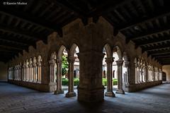 DSC6764 Claustro del Monasterio de Santa María la Real de Nieva, finales del siglo XIV y principios del siglo XV, (Segovia) (Ramón Muñoz - ARTE) Tags: monasterio de santa maría la real nieva claustro claustros