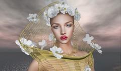 #126 B (TABATHA KOBA) Tags: nala queen dising beathiful flowers sky