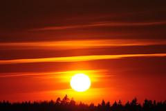 MDD_1642 (Dmitry Mahahurov) Tags: sunset sun russia tosno d300 mahahurov тосно небо закат