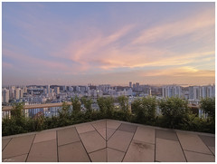 Top of the world (070417) (n._y_c) Tags: architecture singapore sunset omd olympus mz714f28pro m43 microfourthird city cityscape urban urbanscape roof rooftop bluehour pink publichousing omdem5mk2