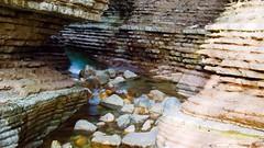 Foto scattata qualche mese fa. Brent de l'Art,i caratteristici canyon scavati nella roccia dal torrente Ardo, nella Valbelluna (roberta.marcon) Tags: fotografia nikonphotography nikon natura canyon fiumi valbelluna trichiana brentdelart