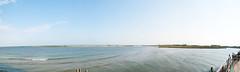 isola verde, foce fiume adige.