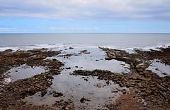 DSC_0164 (prettyredglasses.com) Tags: seatonsluice beach englishcoast northeastengland seaside nature exploreearth lighthouse stmaryslighthouse seasideview