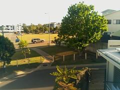 2017-04-28T08:00:04.207033+10:00 (growtreesgrow) Tags: trees timelapse raspberrypi