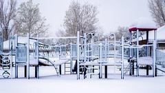 Snowday 04292017-022 (laureanophoto) Tags: snow042017 snow storm colorado pentax 18135 frozen freezing winter cold