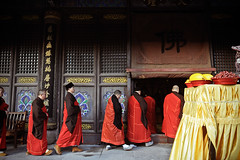 Procession (Leonid Plotkin) Tags: china mountain man religious temple asia buddhist traditional religion monk buddhism sacred procession tradition putuoshan holymountain sacredmountain