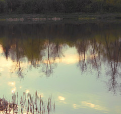Kielce, Poland // 05 2013 #4 (studioarte22) Tags: nature landscape photography photo fotografia paesaggio