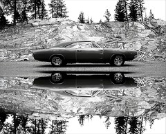 1968 Dodge Charger R/T - Into the Wild (1968 Dodge Charger R/T | Scott Crawford) Tags: original shadow white reflection green classic cars hardtop car sedan vintage reflections scott photo washington interesting automobile spokane driving shadows unitedstates muscle top metallic interior wheels vinyl cruising automotive retro american valley transportation nostalgic dodge 1968 chrysler mopar bullitt 440 rt sixties v8 charger carshow magnum musclecar collectable horsepower 68 yesteryear easternwashington scottcrawford roadtrack chargerrt inlandnorthwest 60s pentastar 1968dodge 1968dodgecharger bbody 1968charger 1968dodgechargerrt