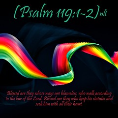 Psalm 119:1-2 nlt (Bob Smerecki) Tags: life love church true rock stone easter born high truth heaven king christ god spirit brother father ghost religion jesus lord christian mount holy moses again olives lamb bible alive commandments messiah risen salvation abba sanctuary prayers tabernacle nations sabbath blessed redeemer almighty sins scriptures passover faithful everlasting slain forgive baptised crucified preist apostle forgiven pslam 11912 deciples reserection strongtower