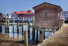 Fish cleaning shed on a dock along Shem Creek (PhotosToArtByMike) Tags: sc fishing mountpleasant southcarolina charleston lowtide lowcountry oldvillage seafoodrestaurant waterfrontrestaurant shemcreek