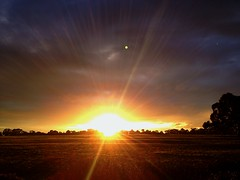 Sunset at Royal Park (cafuego) Tags: sunset melbourne lensflare royalpark