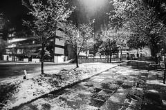 Neve (Miriam Cardoso de Souza) Tags: winter gelo photo neve fotografia inverno frio turismocaxiasdosulrs riogransedosulbrasil