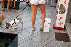 DSC_4672 (Florindo Balkan) Tags: summer italy ass dogs legs upskirt shorts flashing chubby exibitionism voyurism nikond3100
