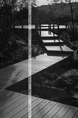 Residential - Meyersdal Eco Estate - Johannesburg - Decking + Balustrading - Summit Profile - Tread finish - Xavia colour - Installer: Saventa Group/Engadini (http://www.eva-tech.com/en/) Tags: pool last eva jacuzzi summit railing tread decking xavia evalast evatech