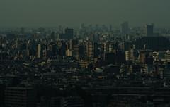 Tokyo 2820 (tokyoform) Tags: city urban japan skyline architecture buildings dark 350d japanese tokyo asia cityscape skyscrapers suburbia ciudad tquio stadt  bleak  suburbs japo sprawl japon ville tokio stadtbild paisajeurbano japn   japonya  nhtbn paysageurbain jongkind           chrisjongkind   tokyoform