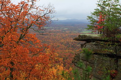 Staying on topic (MarcusDC) Tags: autumn leaves fallcolor kentucky indianfortmountain